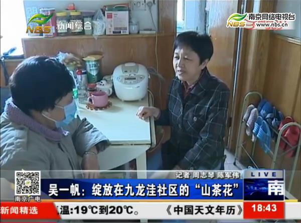 """吴一帆:绽放在九龙洼社区的""""山茶花"""""""